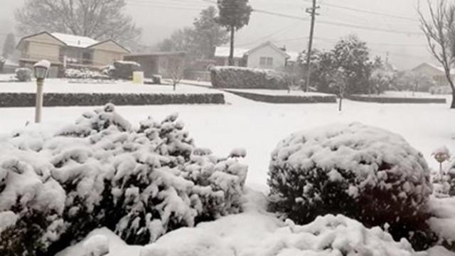 Снеговалежи зарадваха австралийците