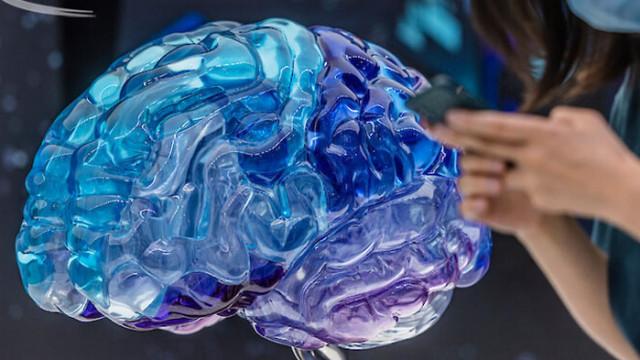 Пазете мозъка: Пет вредни навика увеличават риска от деменция