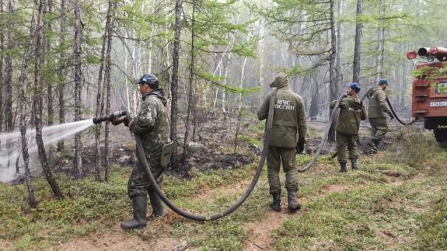Повече от 250 горски пожара бушуват в Русия