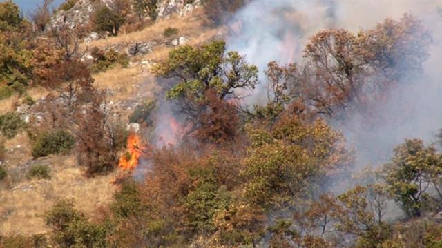 Пожар край пътя София-Калотина, движението е ограничено