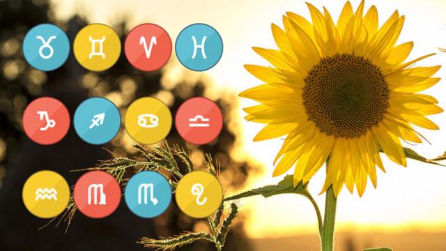 Дневен хороскоп и съветите на Фортуна  – петък, 27 август 2021 г.