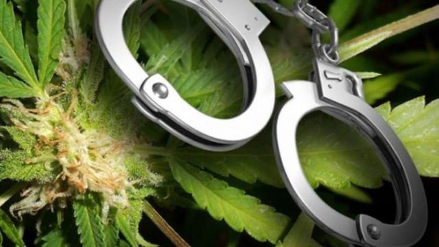 Ефективна присъда за варненски наркодилър