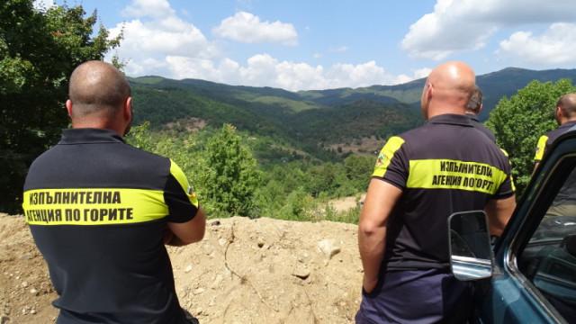 Агенцията по горите ще раздава месечни бонуси на съвестни инспектори