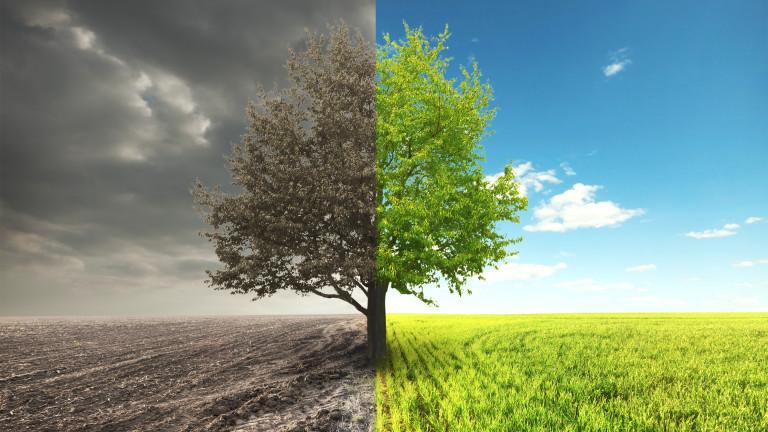 Един малко очакван ефект от климатичните промени