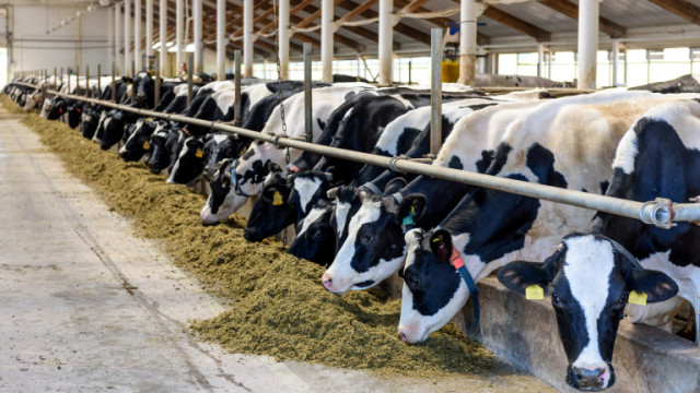 90% от световните субсидии за земеделие увреждат хората и планетата