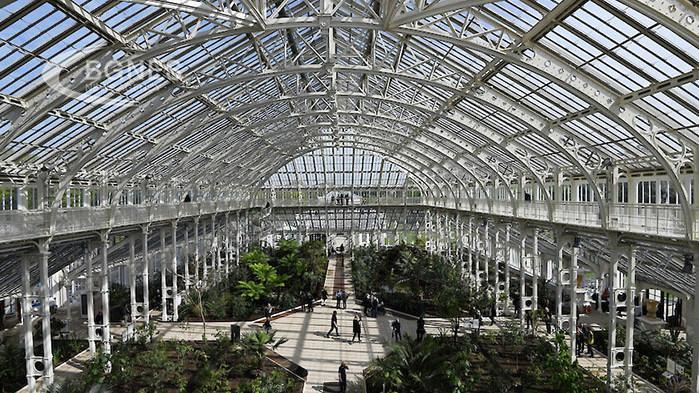 Британските Кралски ботанически градини световен рекордьор по брой живи растения