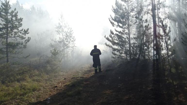 Пожарът над Разлог пламна отново