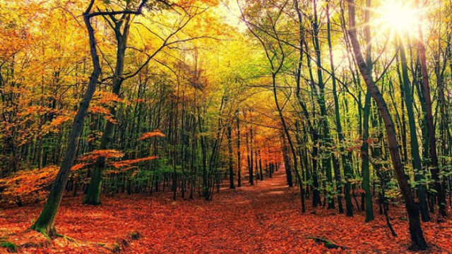 Магическото време на есенното равноденствие