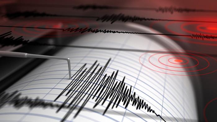 Земетресение с магнитуд 4,8 по скалата на Рихтер удари индонезийския