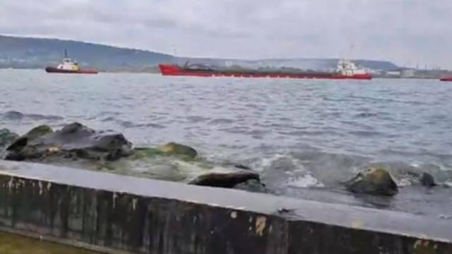 """Най-накрая: Корабът """"Вера Су"""" вече е във Варна"""