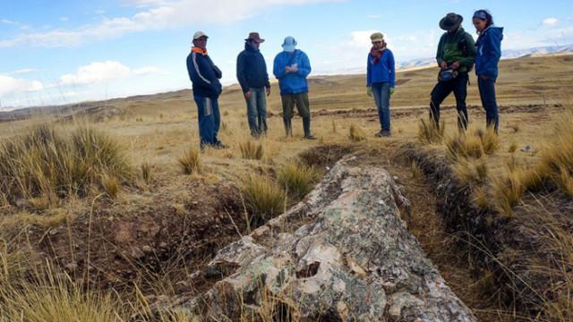Учени откриха гора, погребана от вулкан преди десет милиона години