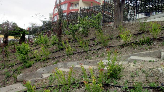 """Проверяват градинките в """"Приморски"""", поддържани със средства по общински проект"""