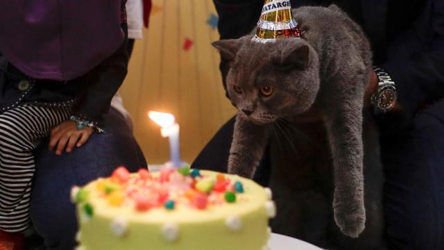 """Без """"Честит рожден ден"""" по време на пандемия"""