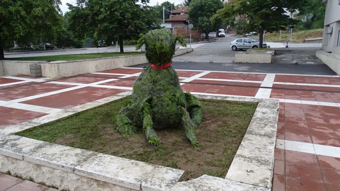 Куче-храст радва благоевградчани пред библиотеката