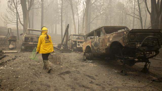 Над 30 загинали в горските пожари по западното крайбрежие на САЩ