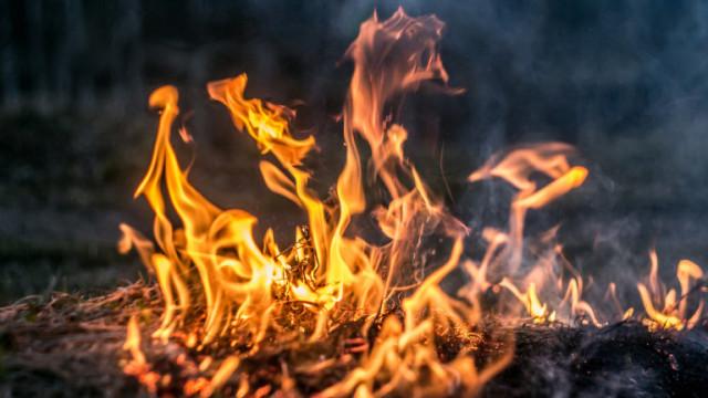 Пожарът край бургаското село Граничар е овладян