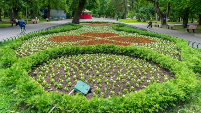 Над 31 000 цветя ще бъдат засадени в Ямбол