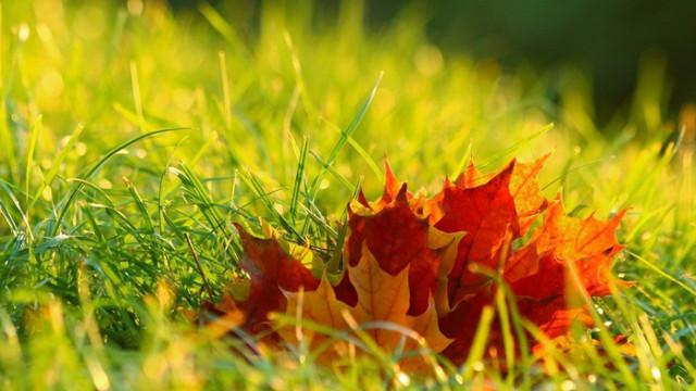 Слънчев календар – събота, 30.05.20