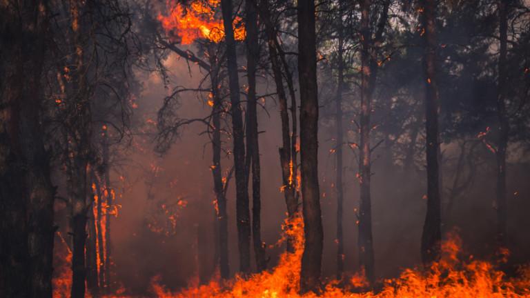 Червен код: Екстремален риск от пожари в 7 области