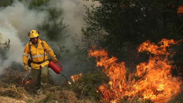 Има задържан за пламналите вчера тревни площи във Владиславово