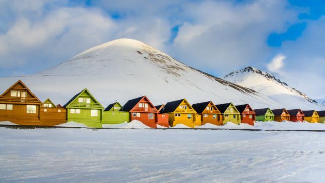Свалбард - мястото, където има повече полярни мечки, отколкото хора