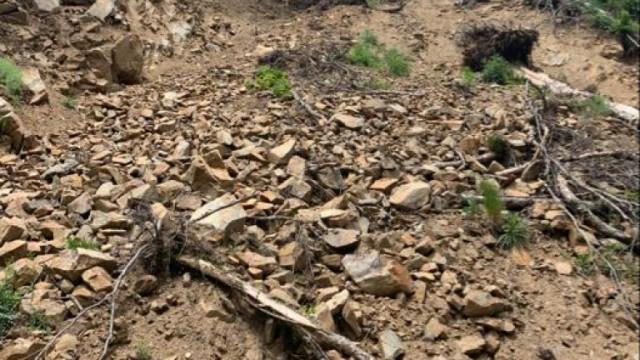 """Свлачището в местността """"Трифон Зарезан"""" край Варна нямало да бъде укрепено тази година"""