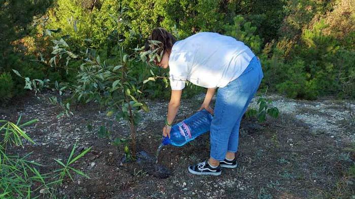 Ученици засадиха дръвчета край Варна