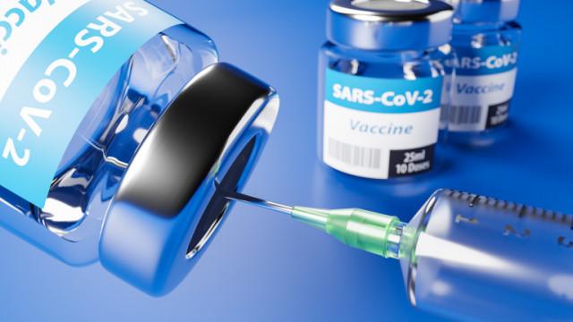 Учените от БАН - на 1/3 от пътя за изготвяне на ваксина срещу COVID-19