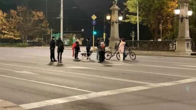 Народът окупира Орлов мост – 9 човека и едно куче
