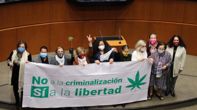 Сенатът на Мексико легализира марихуаната