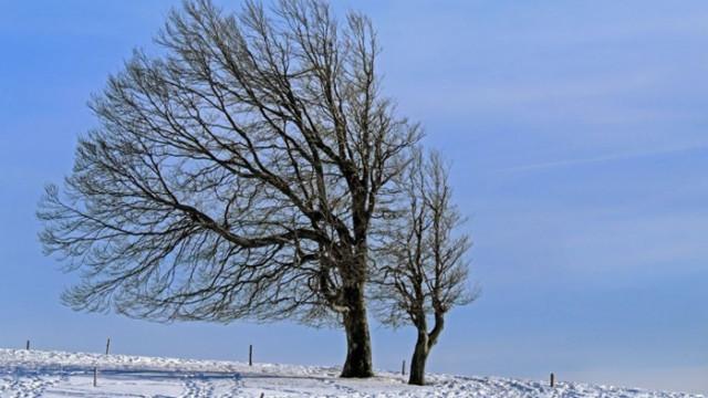 Утре очакваме първи сняг за годината