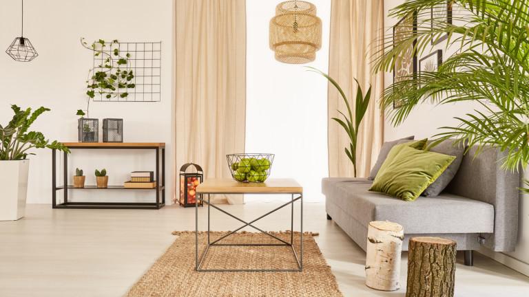 Разчистване, подредба на мебели и свежи цветя - по-приятен дом за 10 минути