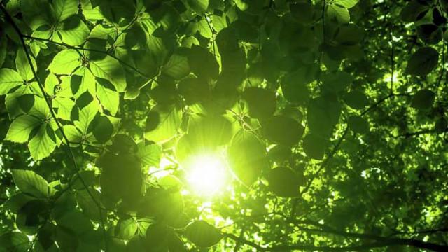 Слънчев календар – събота, 6 юни 2020 г.