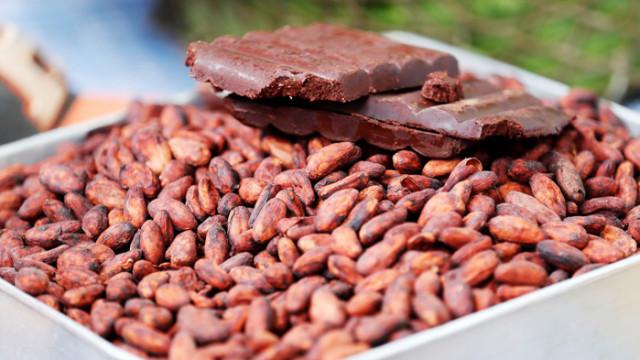 Какаото подобрява работата на мозъка