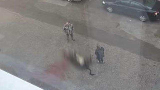 Мъж от Гоце Делчев заколи крава на пътя, кара се със съседка заради забележка