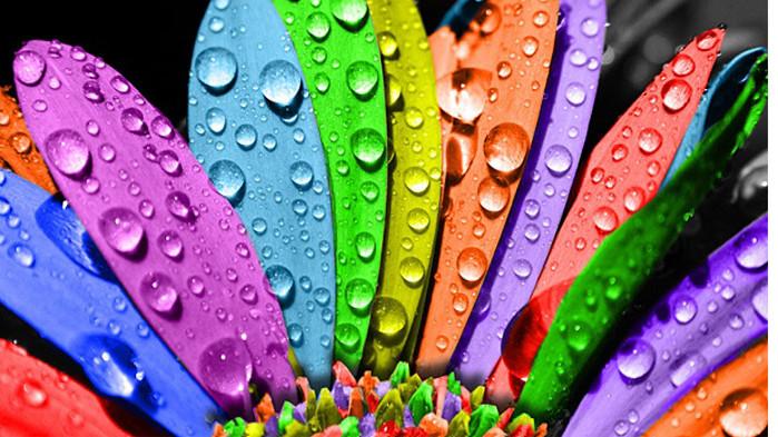 Цветовете за дните на седмицата от 08 до 14 юни