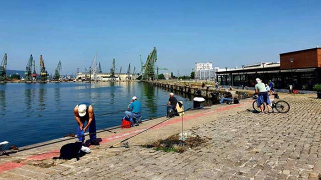 Рибарите на Морска гара: Това, че водата е мръсна, е пусканица. Рибата е чиста (СНИМКИ и ВИДЕО)