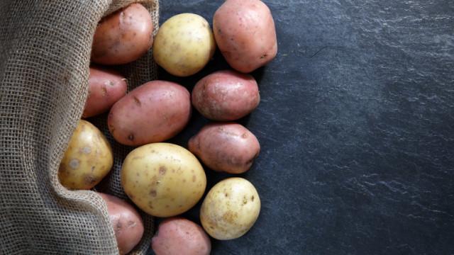 Картофи за 400 евро, матча за 200, мляко и още от най-скъпите продукти в света