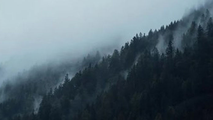 """Свалиха тялото на загиналия турист в Стара планина в местността """"Паниците"""""""