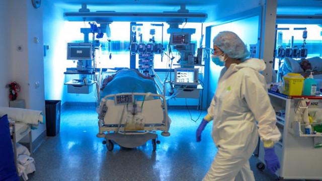 Имуномодулатори се оказват ефективни в борбата с COVID-19