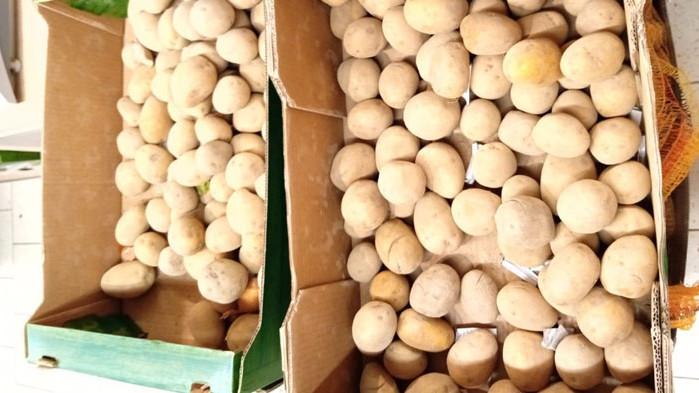 БАБХ не установи разминавания в обявения произход на картофите в търговски обекти и на борса в София