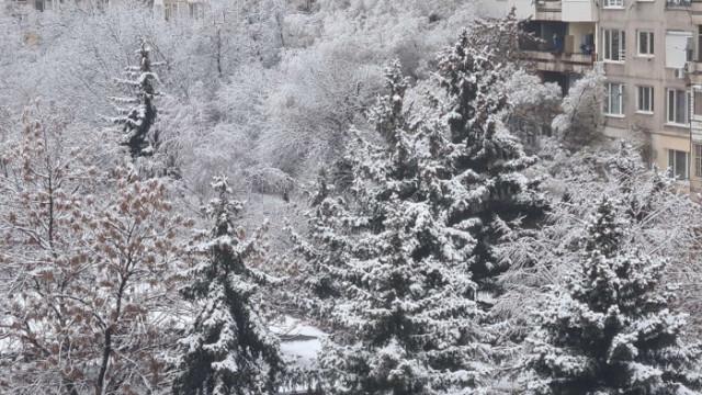 Мразовити температури сковаха страната, навсякъде градусите са отрицателни