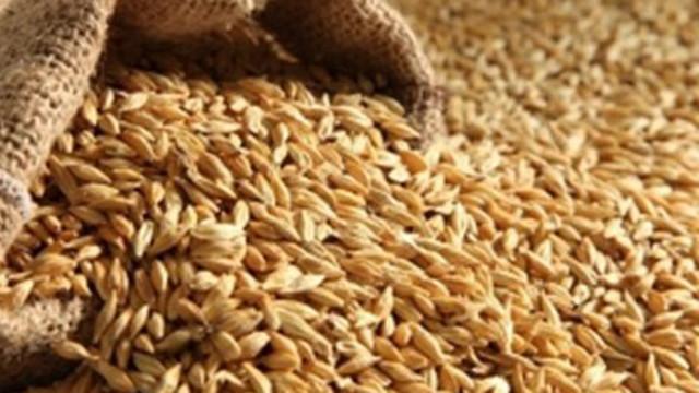 Разкриха крупна кражба на жито в карловско село