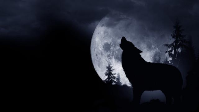 Вълча Луна, пълнолунието и кога е първото за 2021 г.