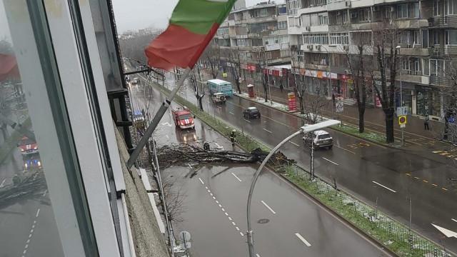 19 сигнала са получени при дежурния в община Варна във връзка с влошената метеорологична обстановка