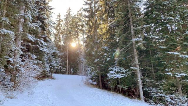 Села в Хасковско и Кърджалийско остават без ток заради снеговете