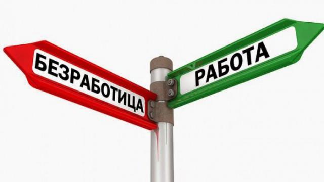 16 087  безработни в област Варна са устроени на работа през 2020 г.