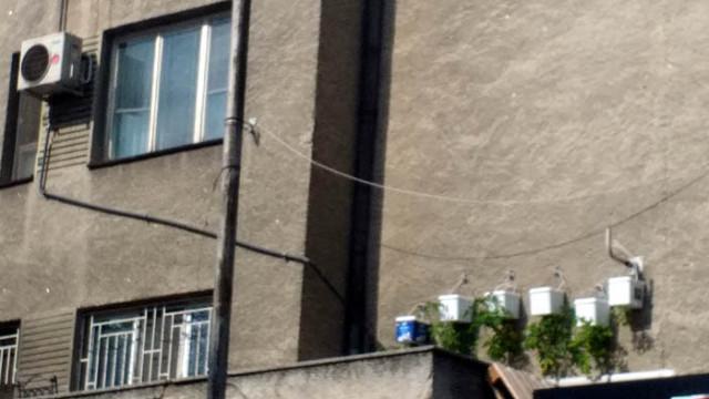 Висящи домати никнат по блоковете във Варна