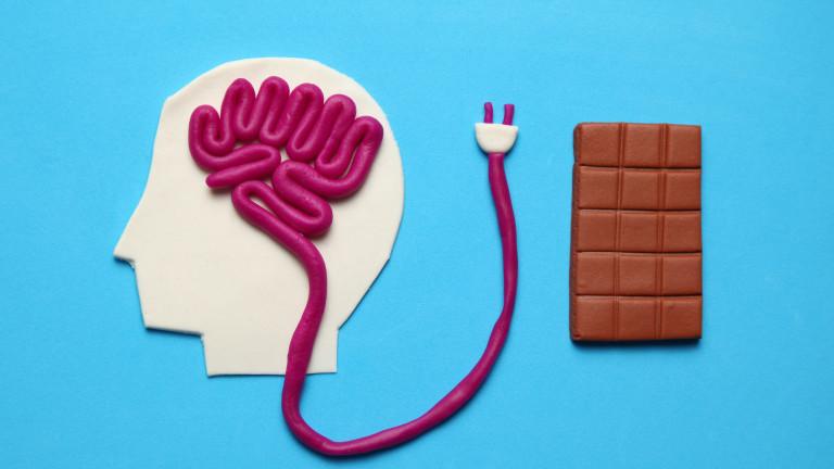 Как захарта влияе на мозъка