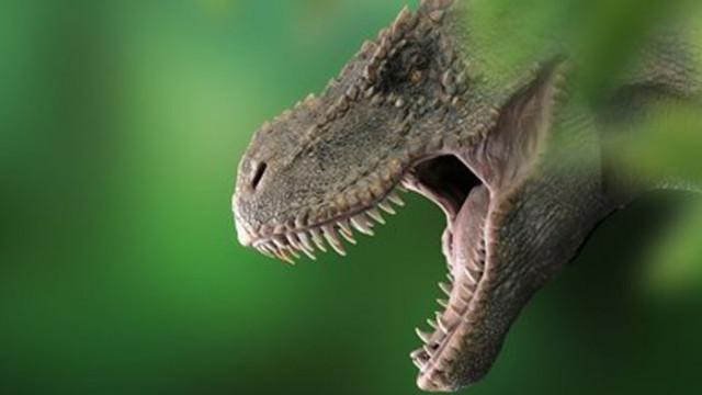 Тиранозаври- тийнейджъри са потискали другите видове динозаври